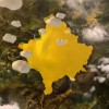 Branding de ţară – Kosovo