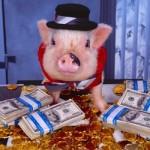 porc-bogat